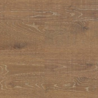 CP Japanese oak craggy